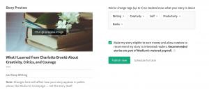 Image of Medium publish options