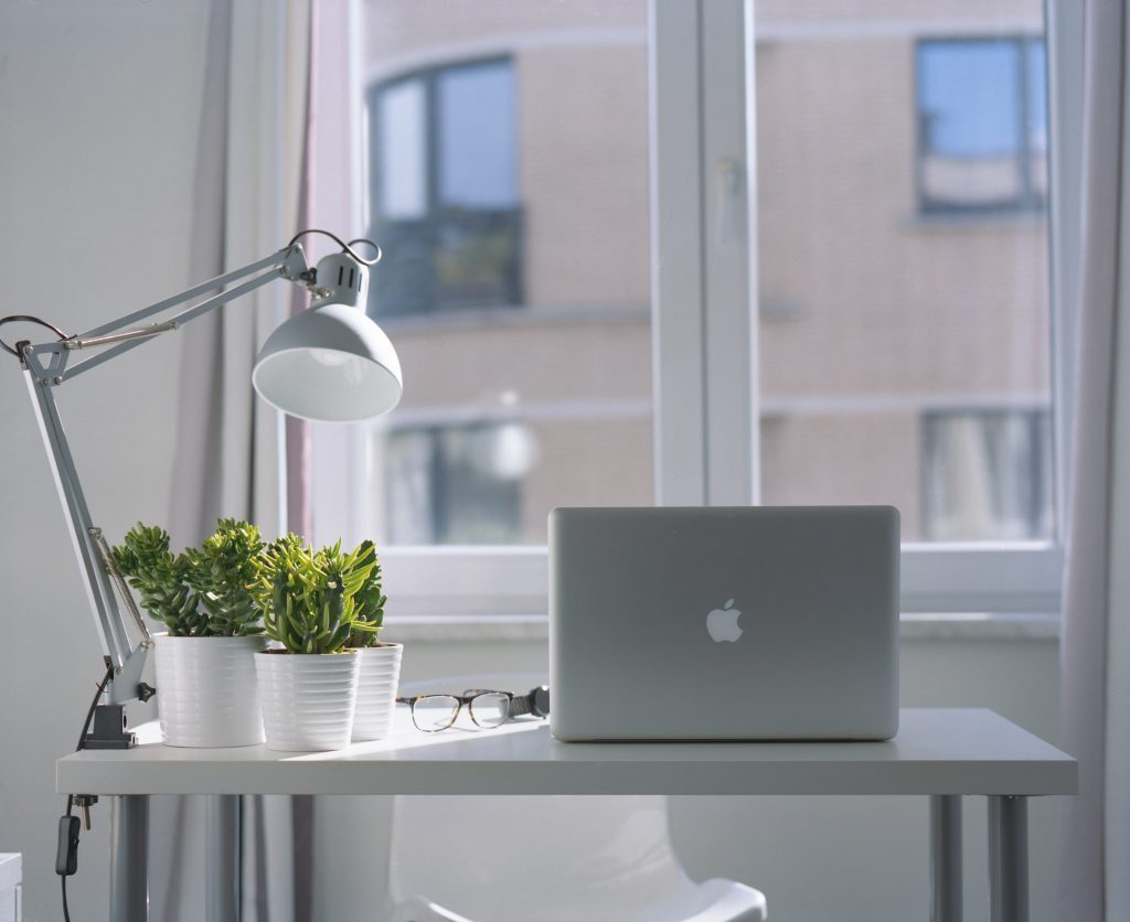 Laptop on desk next to plants and lamp in front of window